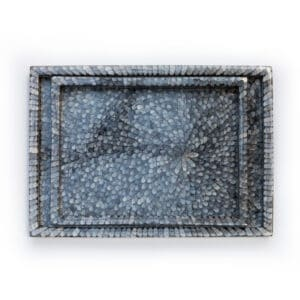 Blue Shell tray