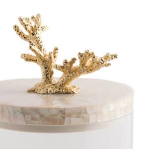 Coral Storage Jar