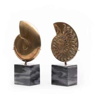 Ammonite Brass Object
