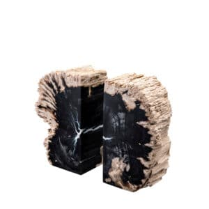 Designer Fossilised Wood Bookends Paperweight
