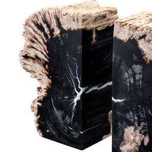 Fossilised Wood Bookends
